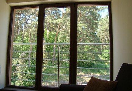 Widok na las z okna