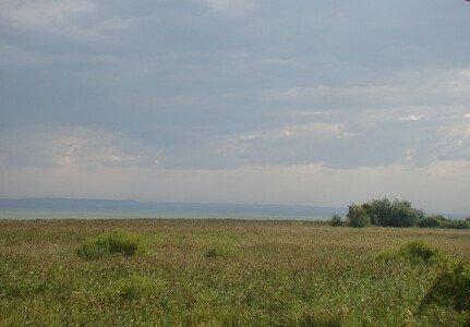 Widok z Tarasu