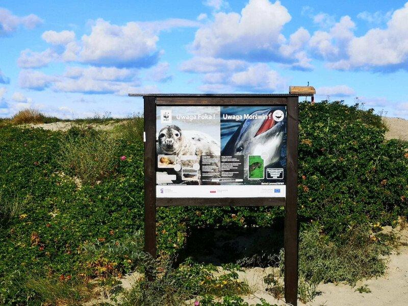 Szum morza i drobniutki piasek pod stopami pomoże przygotować się do kolejnego roku szkolnego ;)