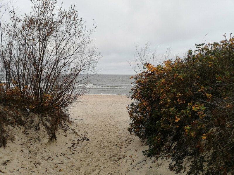 Nad morzem złota jesień